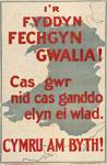 'I'r fyddin fechgyn Gwalia!'
